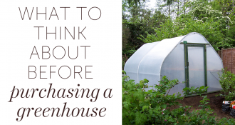 What to think about before purchasing a greenhouse