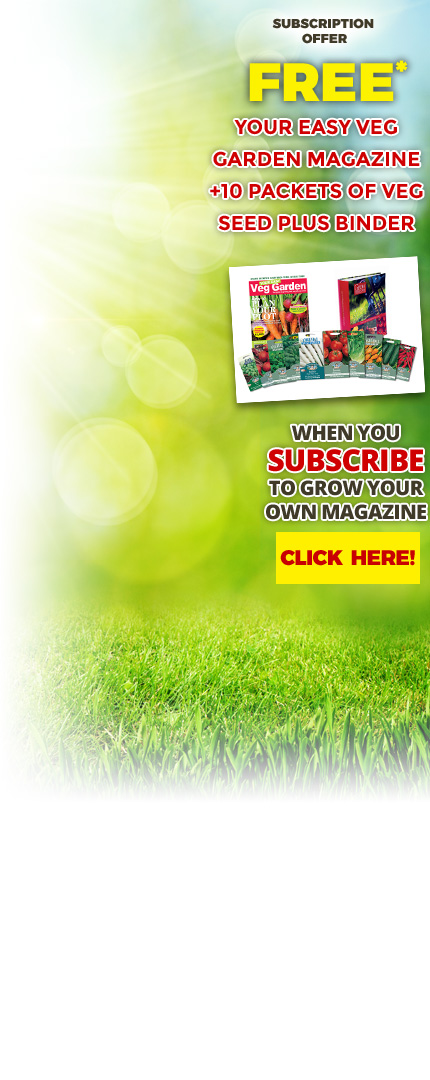 Your Easy Veg Garden Magazine