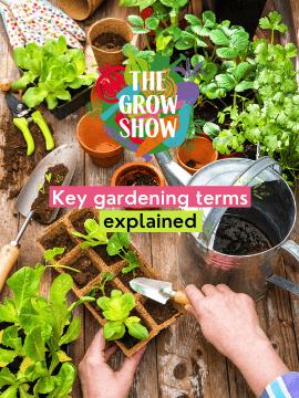 Key gardening terms explained