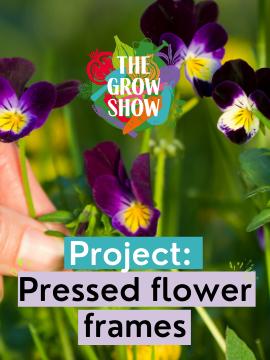 Project: Pressed flower frames