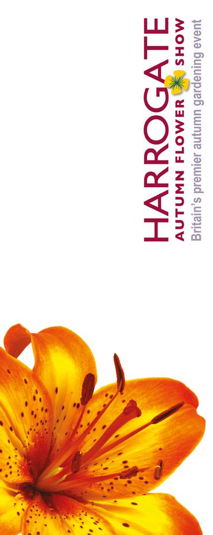 harrogate-flower-show-august