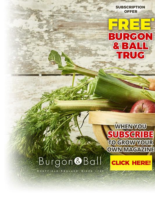 subs-gift-burgon-ball-trug